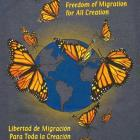 Image of Monarch Migration